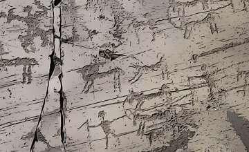 Torri del Benaco | Incisioni rupestri