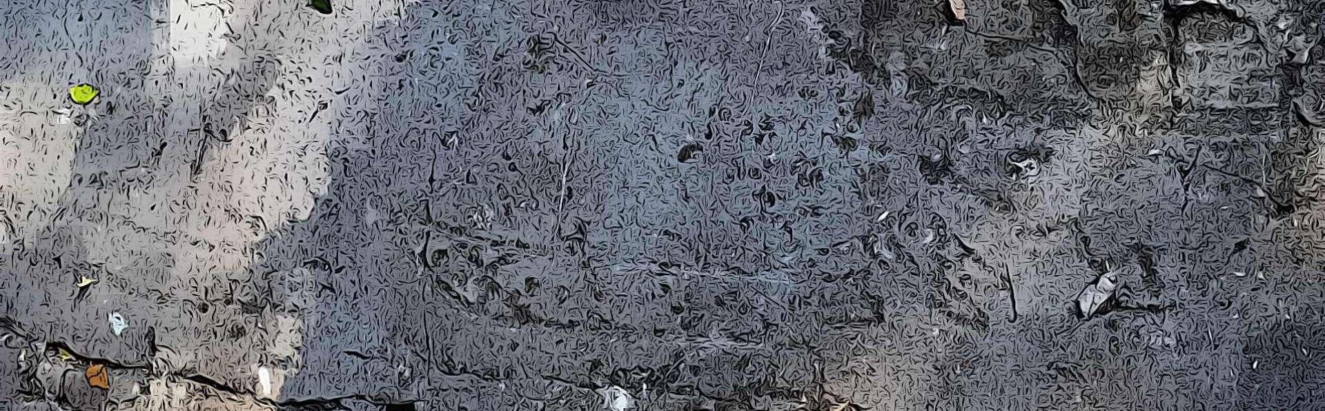 Garda | Sentiero delle incisioni rupestri del Monte Luppia
